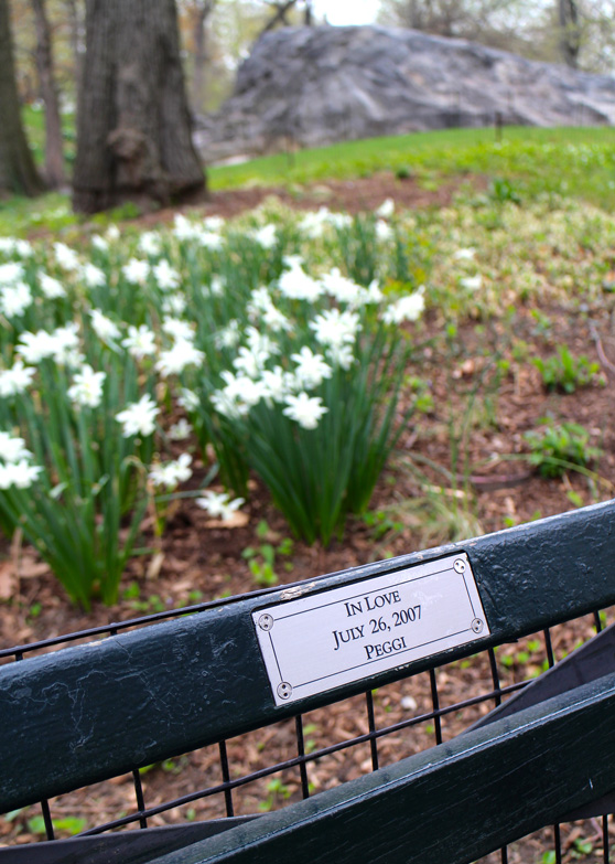 nyc-streets-central-park-bench